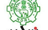 NDRI Recruitment 2020